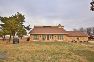 17900 County Road 444, Trent, TX 79561 (MLS #13515856) :: The Harbin Properties Team