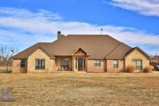 1198 Ohlhausen Road, Abilene, TX 79606 (MLS #13526651) :: The Harbin Properties Team
