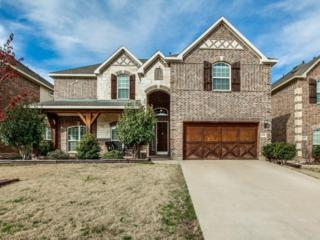 6036 Bee Balm Drive, Fort Worth, TX 76123 (MLS #13542638) :: The Cheney Group