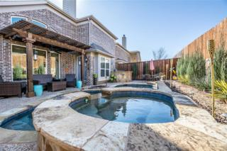 14221 Sparrow Hill Drive, Little Elm, TX 75068 (MLS #13543244) :: The Cheney Group