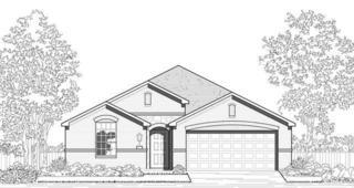 1000 Snowbird Drive, Little Elm, TX 75068 (MLS #13544748) :: The Cheney Group