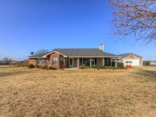 102 Meadow Green Street, Prosper, TX 75078 (MLS #13545595) :: The Cheney Group