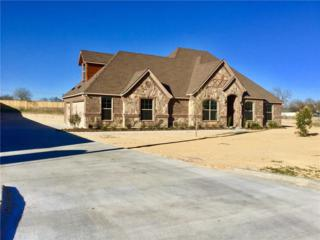 127 Winding Way, Azle, TX 76020 (MLS #13545854) :: The Cheney Group