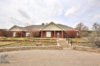 364 Alexandra Drive, Tuscola, TX 79562 (MLS #13551128) :: The Harbin Properties Team