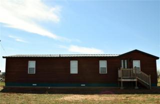 601 Cr 274, Tuscola, TX 79562 (MLS #13552412) :: The Harbin Properties Team
