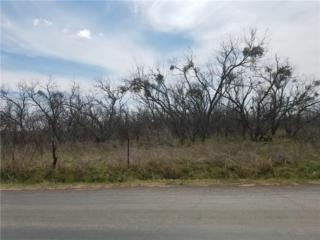 6535 Fm 604, Clyde, TX 79510 (MLS #13556461) :: The Harbin Properties Team
