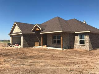 366 Brazos Drive, Abilene, TX 79606 (MLS #13556525) :: The Harbin Properties Team