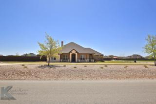 149 Dove Creek Path, Abilene, TX 79602 (MLS #13557346) :: The Harbin Properties Team