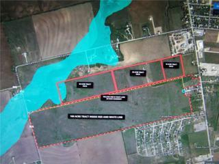 182 Teaff Trail, Tye, TX 79563 (MLS #13560697) :: The Harbin Properties Team