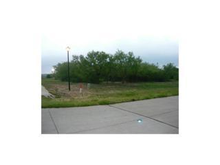 2207 Park Ridge Drive, Cedar Hill, TX 75104 (MLS #13565681) :: Exalt Realty