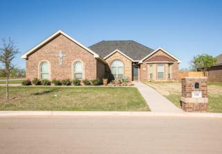 118 Wrangler Circle, Tuscola, TX 79562 (MLS #13569766) :: The Harbin Properties Team
