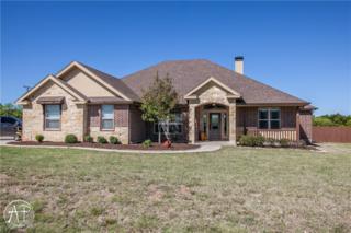 202 Stardust Trail, Tuscola, TX 79562 (MLS #13569881) :: The Harbin Properties Team