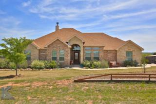 141 Lunar View Drive, Tuscola, TX 79562 (MLS #13573243) :: The Harbin Properties Team