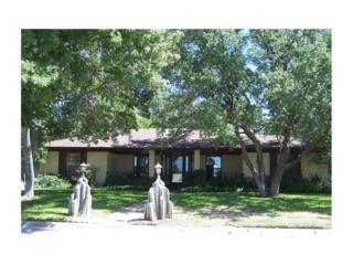 1504 Hillcrest Street, Coleman, TX 76834 (MLS #13578886) :: The Harbin Properties Team