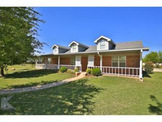 289 Pack Saddle Pass, Abilene, TX 79602 (MLS #13581414) :: The Harbin Properties Team