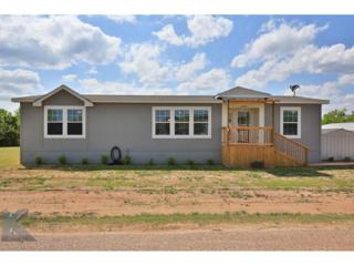 1478 Warren Street, Buffalo Gap, TX 79508 (MLS #13582937) :: The Harbin Properties Team