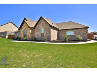 4025 Hill Country Drive, Abilene, TX 79606 (MLS #13583445) :: The Harbin Properties Team