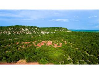 Lot 14 Ranch Road, Buffalo Gap, TX 79508 (MLS #13584111) :: The Harbin Properties Team