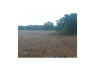 TBD Cr 320, Hawley, TX 79525 (MLS #13584397) :: The Harbin Properties Team