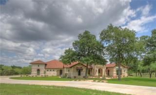 501 W Trail Drive, Spicewood, TX 78669 (MLS #13586286) :: Team Hodnett