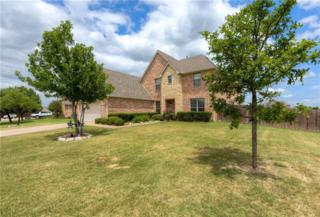 317 Country Lakes Drive, Argyle, TX 76226 (MLS #13602345) :: MLux Properties