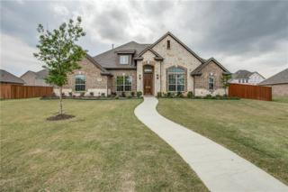 349 Vista Park Drive, Sunnyvale, TX 75182 (MLS #13606180) :: Exalt Realty