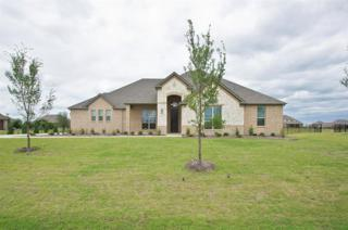 2010 Canyon Road, Celina, TX 75009 (MLS #13608101) :: The Cheney Group