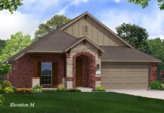5713 Apple Ridge Drive, Mckinney, TX 75071 (MLS #13609341) :: The Cheney Group