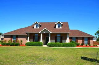 11430 Country Ridge Lane, Forney, TX 75126 (MLS #13610179) :: Exalt Realty
