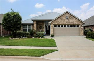 1517 Cockatiel Drive, Little Elm, TX 75068 (MLS #13610185) :: The Cheney Group