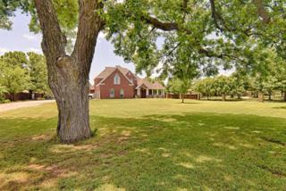 460 Turner Warnell Road, Mansfield, TX 76063 (MLS #13611272) :: Exalt Realty