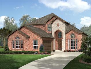 8917 Jewelflower Drive, Fort Worth, TX 76131 (MLS #13611757) :: NewHomePrograms.com LLC