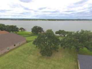 3446 Abes Landing Drive, Granbury, TX 76049 (MLS #13259990) :: Clarkson Premier Team, Magnolia Realty