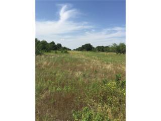 TBD Fm 3326 S, Hawley, TX 79525 (MLS #13579196) :: The Harbin Properties Team