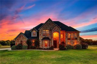 3709 Canyon Pass Trail, Burleson, TX 76028 (MLS #13610910) :: The Mitchell Group