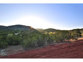 TBD Ranch Road, Buffalo Gap, TX 79508 (MLS #13574049) :: The Harbin Properties Team