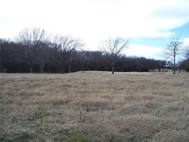 285 Bent Oak Drive, Pottsboro, TX 75076 (MLS #13331462) :: Robbins Real Estate Group