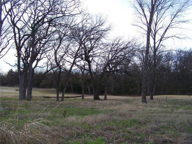229 Bent Oak Drive, Pottsboro, TX 75076 (MLS #13331544) :: The Mitchell Group