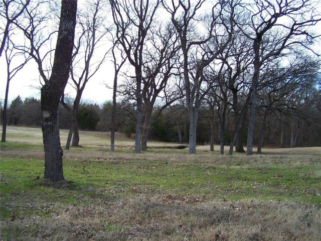 215 Bent Oak Drive, Pottsboro, TX 75076 (MLS #13331547) :: The Mitchell Group