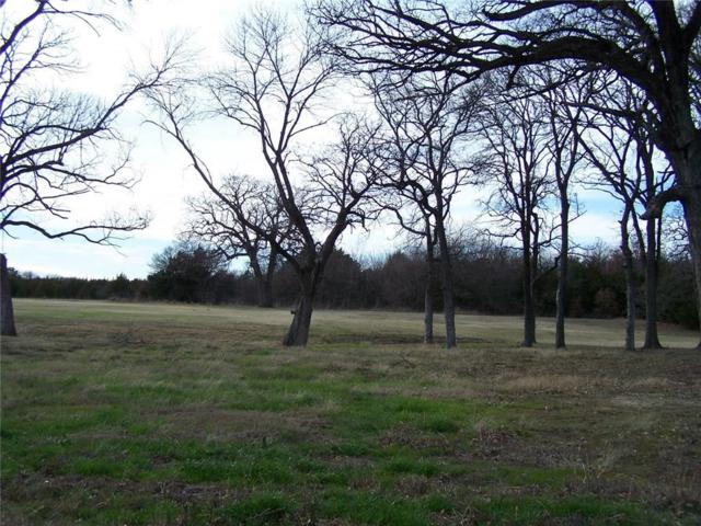 181 Bent Oak Drive, Pottsboro, TX 75076 (MLS #13331563) :: The Mitchell Group