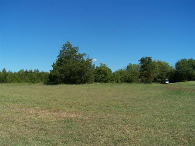 3 Eagle Chase Lane, Pottsboro, TX 75076 (MLS #13332011) :: RE/MAX Town & Country