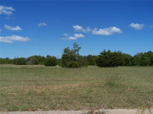12 Eagle Chase Lane, Pottsboro, TX 75076 (MLS #13332083) :: RE/MAX Town & Country