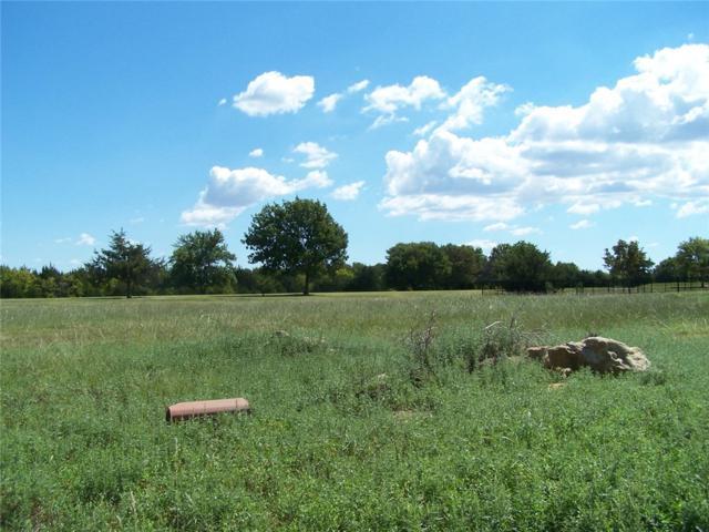 16 Eagle Chase Lane, Pottsboro, TX 75076 (MLS #13332113) :: RE/MAX Town & Country