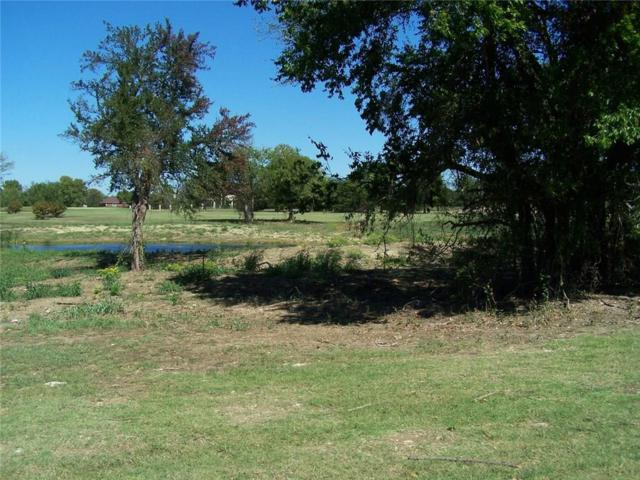 32 Palmer Lane, Pottsboro, TX 75076 (MLS #13332120) :: Frankie Arthur Real Estate