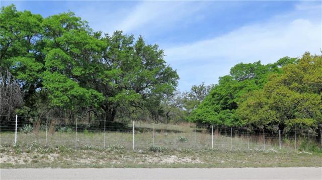 4 Oak Hill Circle, Brownwood, TX 76801 (MLS #13350829) :: RE/MAX Landmark