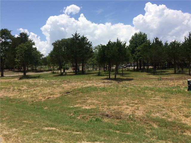 329 Brandon Way, Pottsboro, TX 75076 (MLS #13403368) :: The Mitchell Group