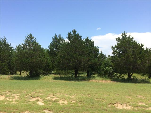 294 Guy Lane, Pottsboro, TX 75076 (MLS #13403596) :: The Heyl Group at Keller Williams