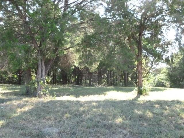 232 Royal Vista Drive #1152, Cedar Hill, TX 75104 (MLS #13464661) :: Team Hodnett