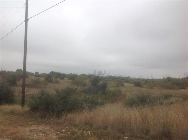 7108 W Hells Gate Loop, Strawn, TX 76475 (MLS #13489562) :: The Mitchell Group