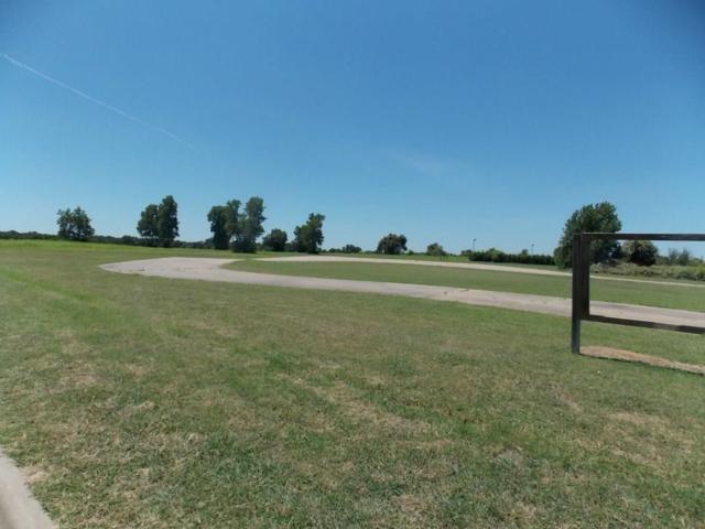 1100 James Road, Granbury, TX 76049 (MLS #13493452) :: The Heyl Group at Keller Williams